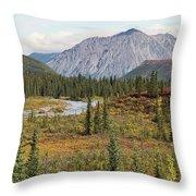 Autumn In Denali Throw Pillow