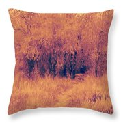 Autumn Mystery Throw Pillow by David King