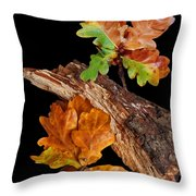 Autumn Oak Leaves And Acorns On Black Throw Pillow