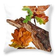 Autumn Oak Leaves And Acorns On White Throw Pillow