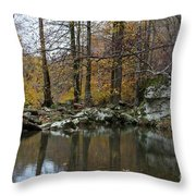 Autumn On The Kings River Throw Pillow