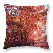 Autumn Path Reimagined Throw Pillow