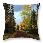 Autumn Pathway Throw Pillow