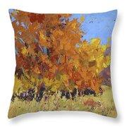 Autumn Treasure Throw Pillow by David King
