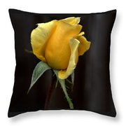 Autumn Yellow Rose Throw Pillow