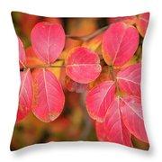 Autumnal Hues Throw Pillow