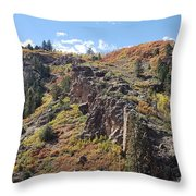 Autumnesium  Throw Pillow