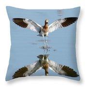 Avocet Landing Throw Pillow