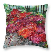 Azaleas National Arboretum 201836 Throw Pillow