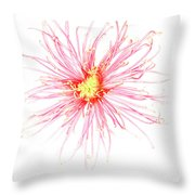B760/1832 Throw Pillow