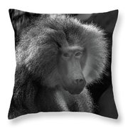 Baboon Black And White Throw Pillow