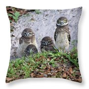 Baby Burrowing Owls Posing Throw Pillow