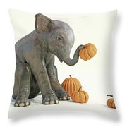 Baby Elephant And Pumpkins Throw Pillow