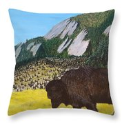 Back From The Brink Throw Pillow by Kevin Daly