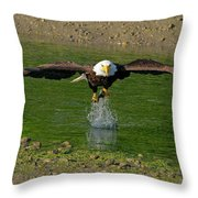Bald Eagle Catching A Fish Throw Pillow