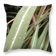 Bamboo And Water Throw Pillow