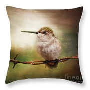 Barbed Wire Hummingbird Perch Throw Pillow