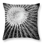 Barrel Cactus Black And White Throw Pillow
