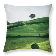 Bathed In Emerald Throw Pillow