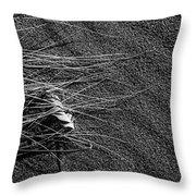 Beach Bones 7 Throw Pillow