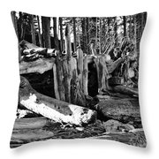 Beach Hut Throw Pillow by Jeni Gray