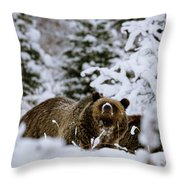 Bear In The Snow Throw Pillow