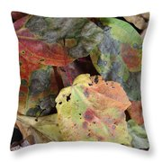Beauti Fall Throw Pillow