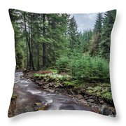 Beautiful Ethereal Style Landscape Image Of Small Brook Flwoing  Throw Pillow