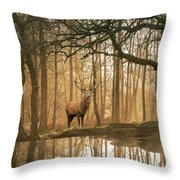 Beautiful Landscape Image Of Still Stream In Lake District Fores Throw Pillow