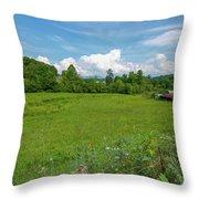 Beautiful North Carolina Day Throw Pillow