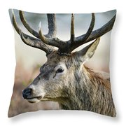 Beautiful Red Deer Stag Cervus Elaphus With Majestic Antelrs In  Throw Pillow