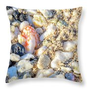 Beauty At The Beach Throw Pillow