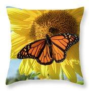 Beauty On The Sunflower Throw Pillow