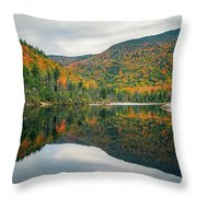 Beaver Pond Throw Pillow by James Billings