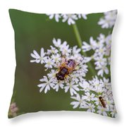 Bee Relaxing On A Flower. Throw Pillow