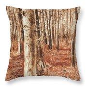 Beech Forest Throw Pillow
