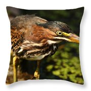Behold The Hunter Throw Pillow