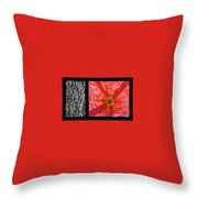 Bento Box 1 Throw Pillow by Mark Shoolery