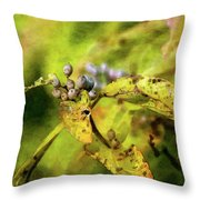 Berries And Aging Leaves 5709 Idp_2 Throw Pillow