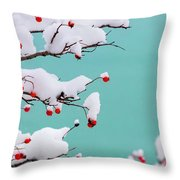 Berries And Cream Throw Pillow