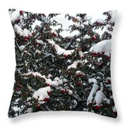 Berries And Snow Throw Pillow