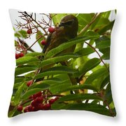 Berries And Waxwing Throw Pillow