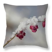 Berry Snowy  Throw Pillow