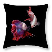 Betta0093 Throw Pillow