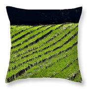 Between The Rows Throw Pillow