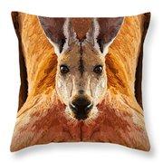 Big Boy Red Kangaroo   Throw Pillow