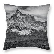 Big Cowhorn Throw Pillow