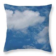 Big Sky, Little Bird Throw Pillow