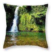 Bioko Waterfall Throw Pillow