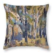 Birch Trees Along The Pond De Melle Throw Pillow